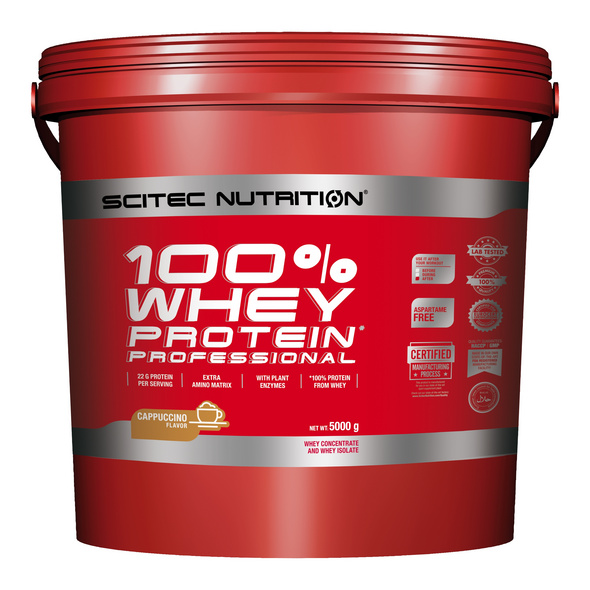 Scitec Nutrition 100% Whey Protein Professional 5000g-Schokolade